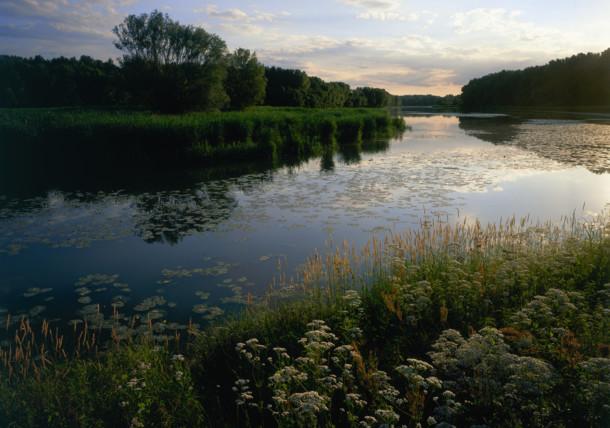 Danube meadows near Stopfenreuth / Donau-Auen National Park