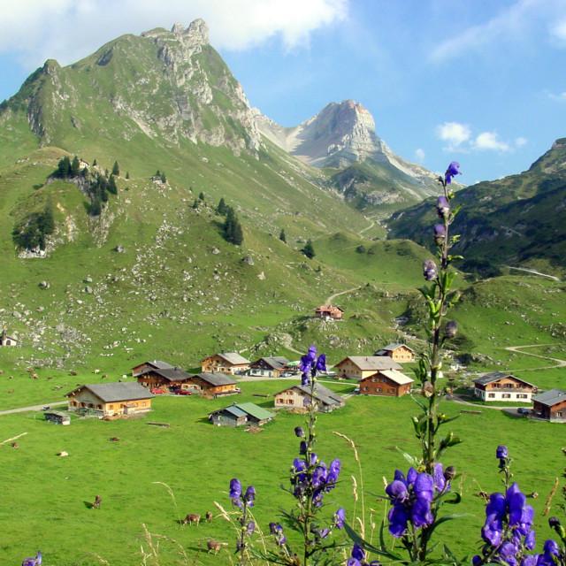 Das Große Walsertal im Sommer