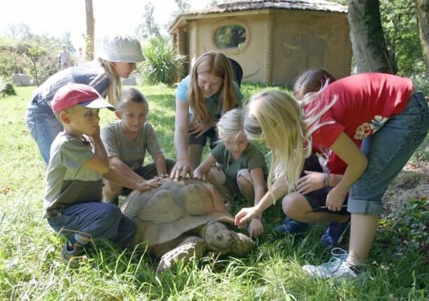 Hellbrunner Zoo