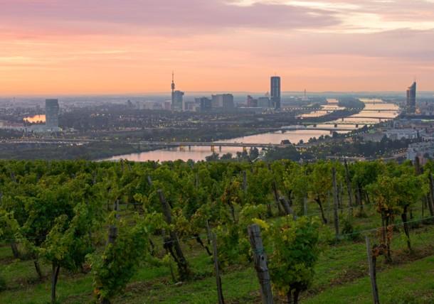 View to Vienna