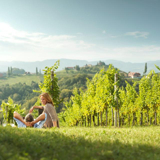 Weingarten Südsteiermark