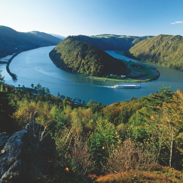 Donauschlinge bei Schlögen, Oberösterreich
