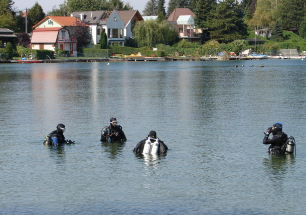 Taucher am Neufeldersee im Burgenland