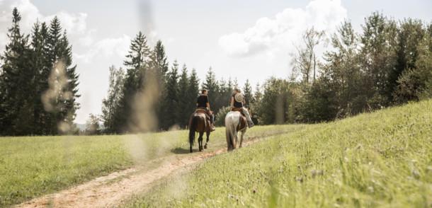 Romantische Reiterwege in Oberösterreich
