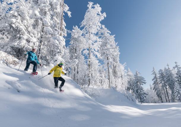 Schneeschuhwandern in Oberösterreich