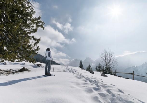 Schneeschuhwandern