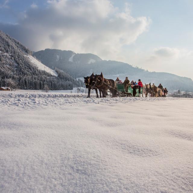 Pferdeschlittenfahrt