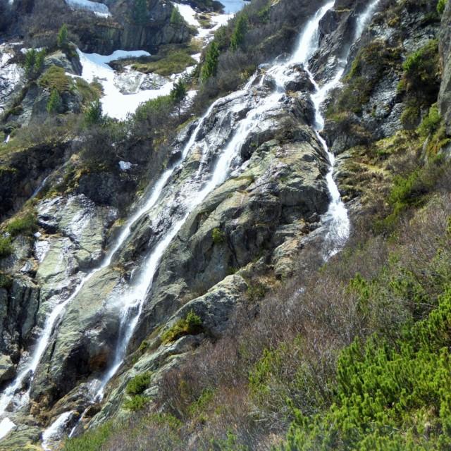 Wilde Wasser Weg Sulzenau