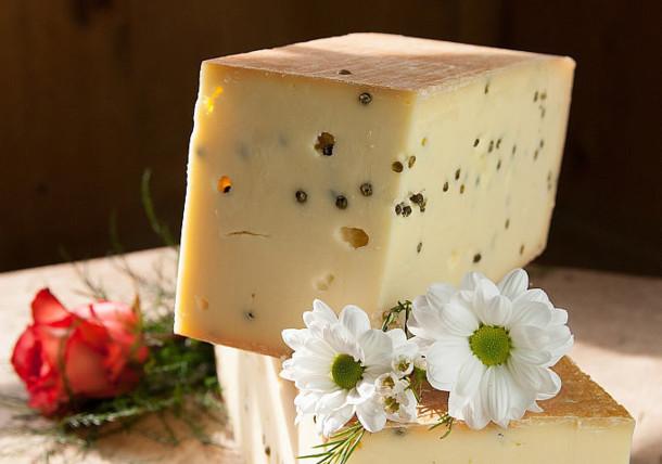 Käse aus dem Tiroler Alpbachtal