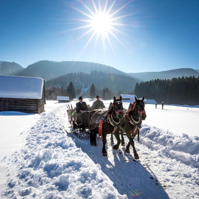 Kutschenfahrt in der Steiermark