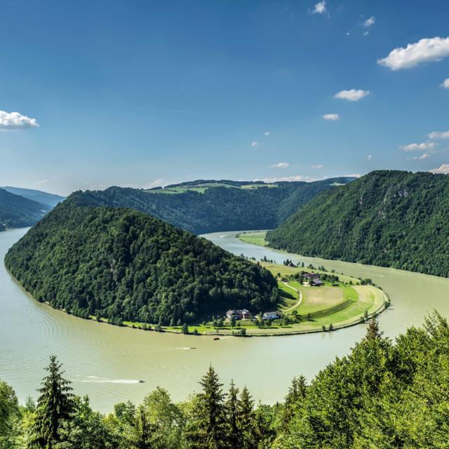 Donau in Oberösterreich: Schlögener Schlinge